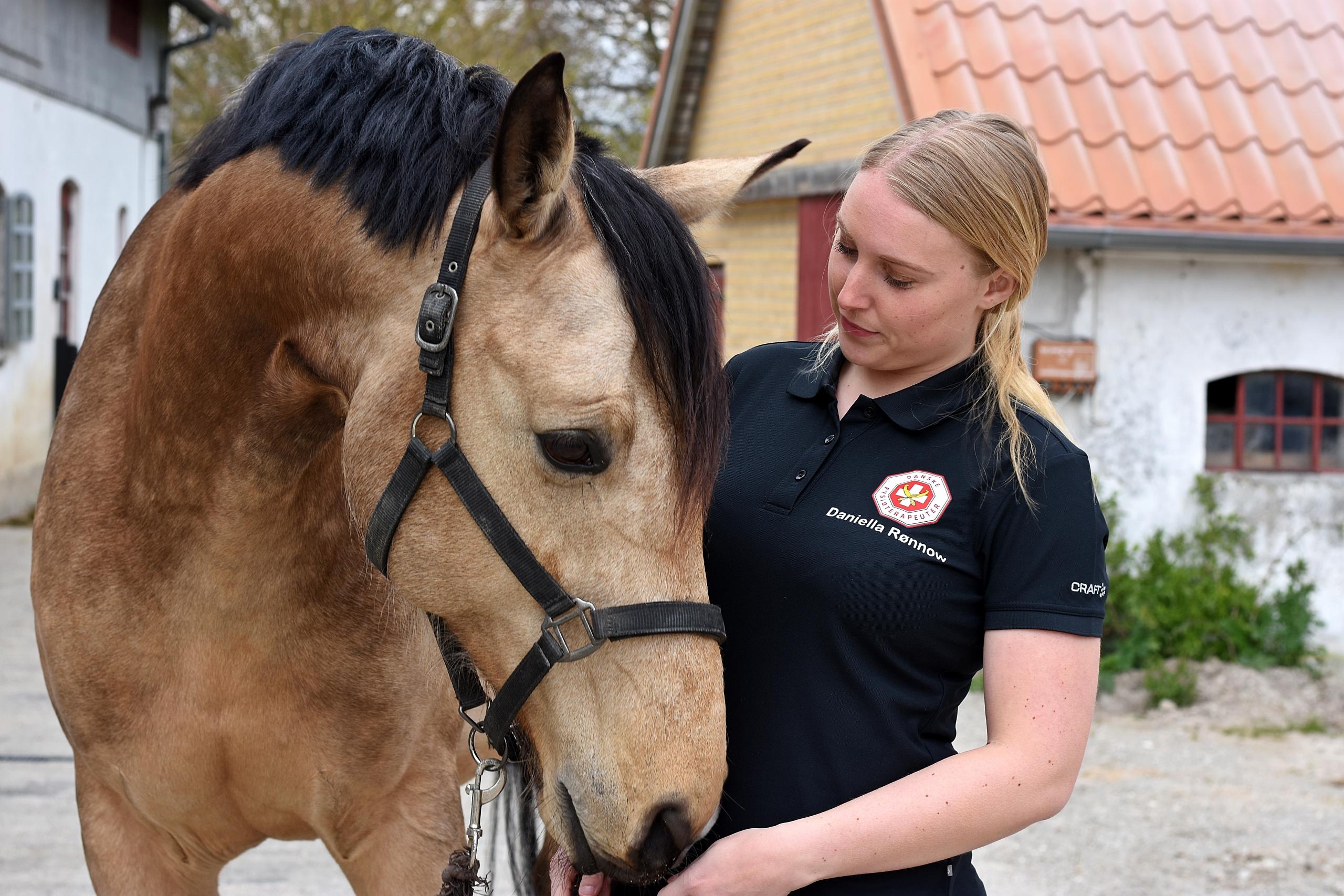 Heste behandling fyn