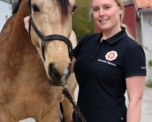 Heste wellness